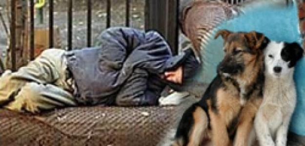 Сочувствие и сострадание в жизни